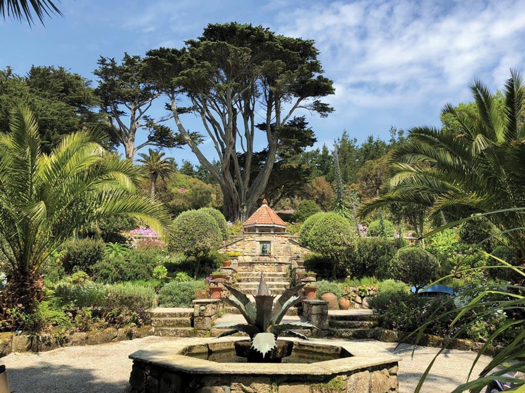 Scilly and Cornish - Tresco Abbey Gardens