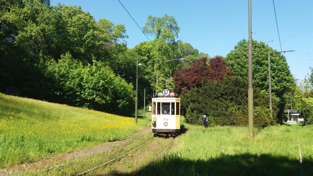 Bruges Bonanza -Scenic Tram in Brussels